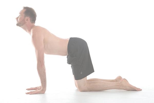total beginner yoga background image